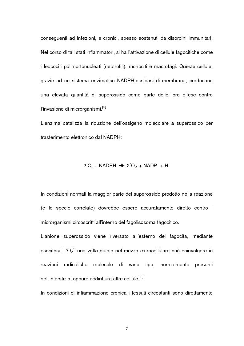 Anteprima della tesi: Misura degli idroperossidi lipidici nel siero mediante l'ossidazione dello ione ferro, Pagina 7