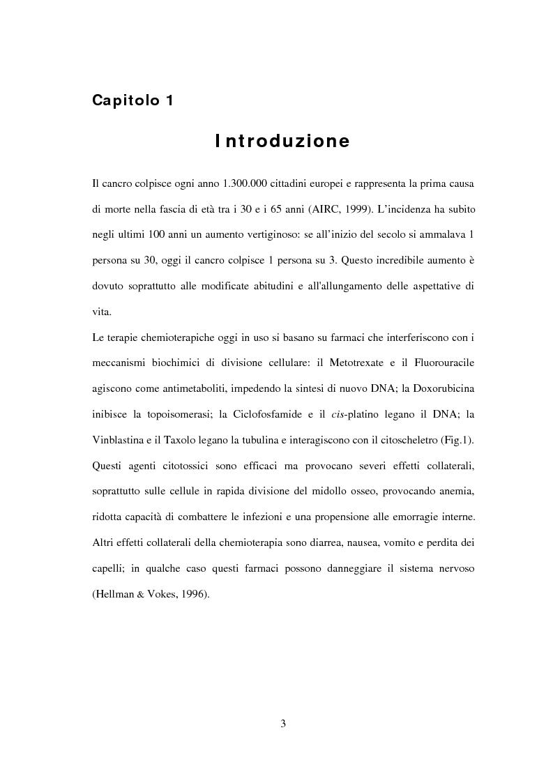 Anteprima della tesi: Studio di nuovi inibitori dell'attività tirosina chinasica associata all'Egfr, Pagina 3