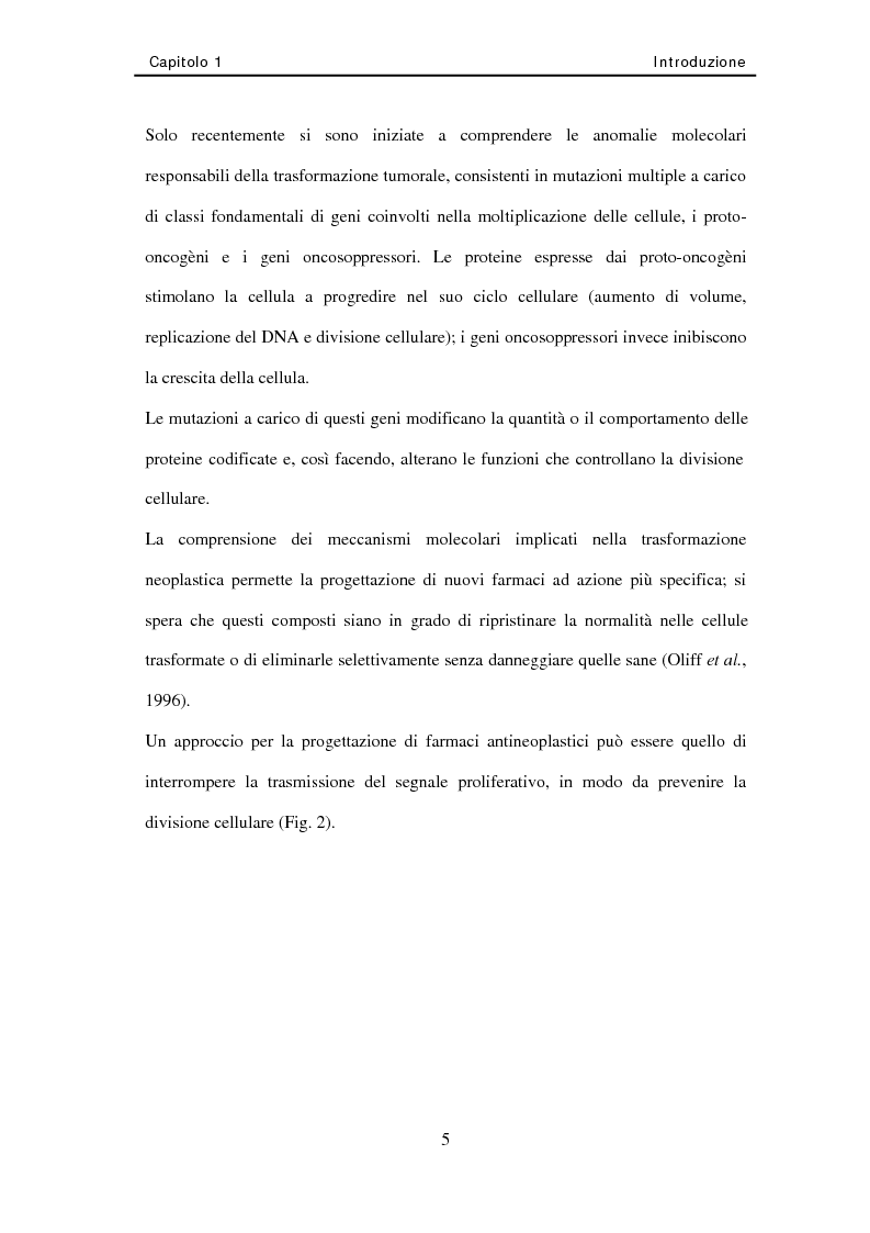 Anteprima della tesi: Studio di nuovi inibitori dell'attività tirosina chinasica associata all'Egfr, Pagina 5