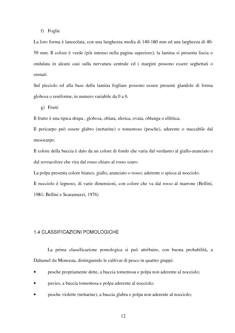 Anteprima della tesi: Valutazione della resistenza a Taphrina deformans di genotipi di pesco ottenuti presso il Dipartimento di Ortoflorofrutticoltura di Firenze, in due differenti ambienti climatici della Toscana, Pagina 8