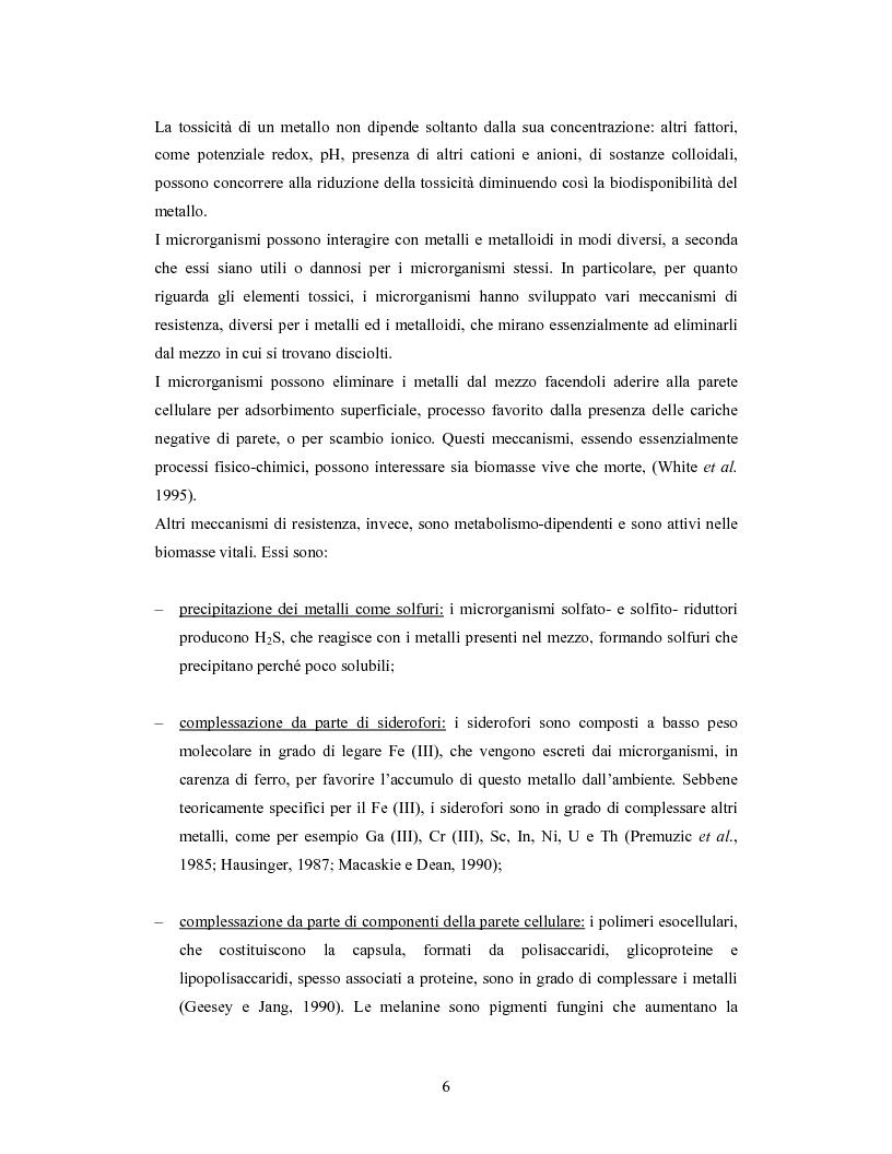 Anteprima della tesi: Accumulo di selenio da parte di specie di Lactobacillus, Pagina 4