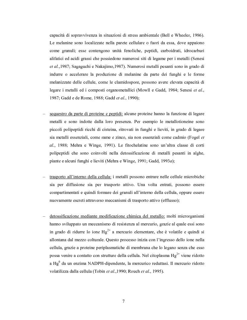 Anteprima della tesi: Accumulo di selenio da parte di specie di Lactobacillus, Pagina 5