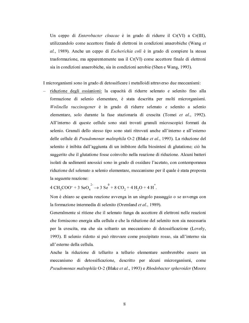 Anteprima della tesi: Accumulo di selenio da parte di specie di Lactobacillus, Pagina 6