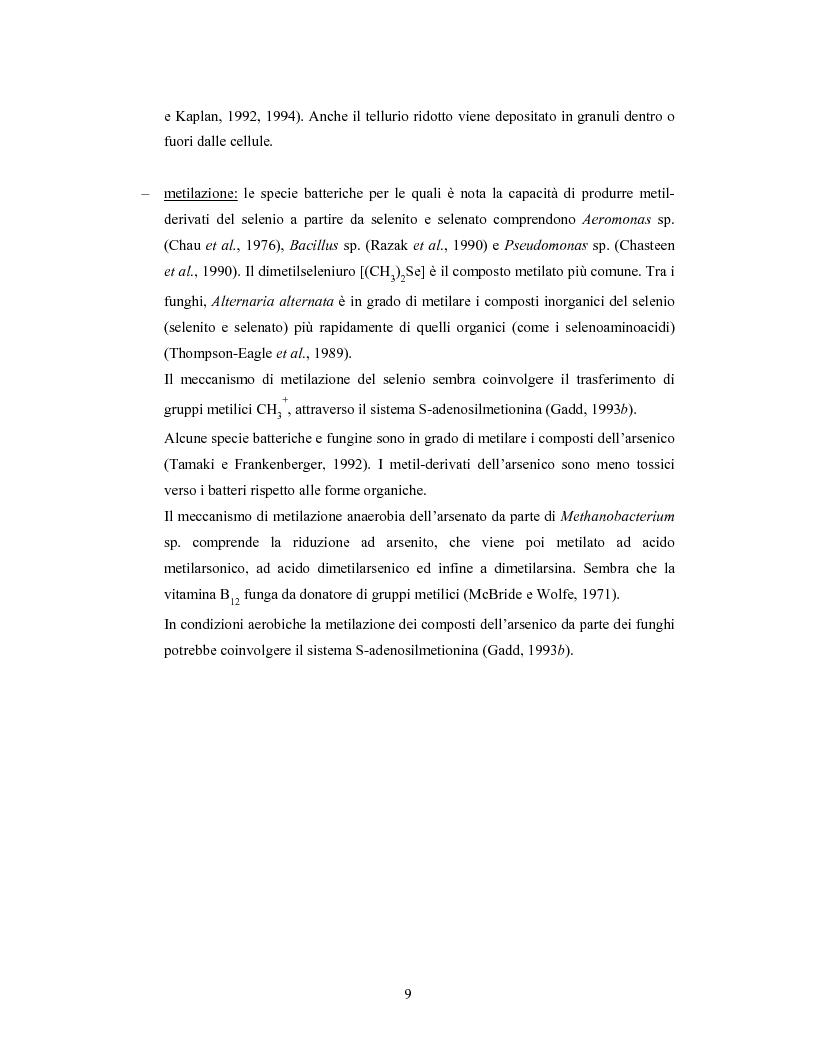 Anteprima della tesi: Accumulo di selenio da parte di specie di Lactobacillus, Pagina 7