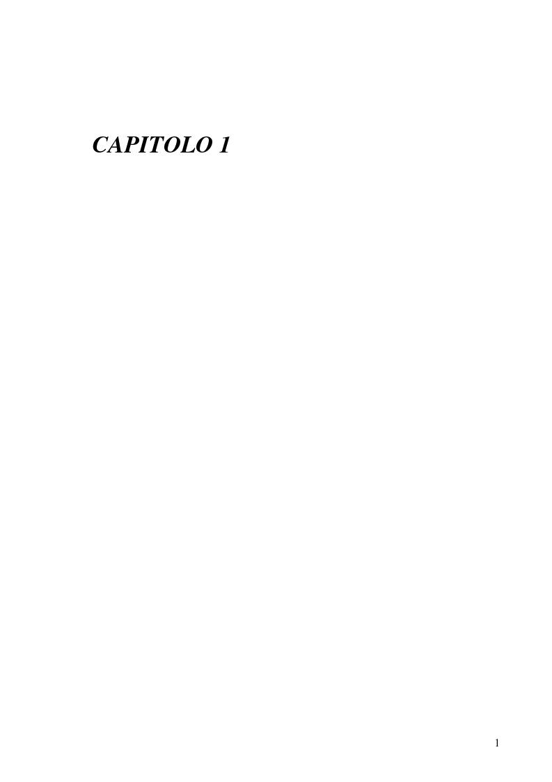 Anteprima della tesi: Le responsabilità contrattuali nell'e-commerce, Pagina 3