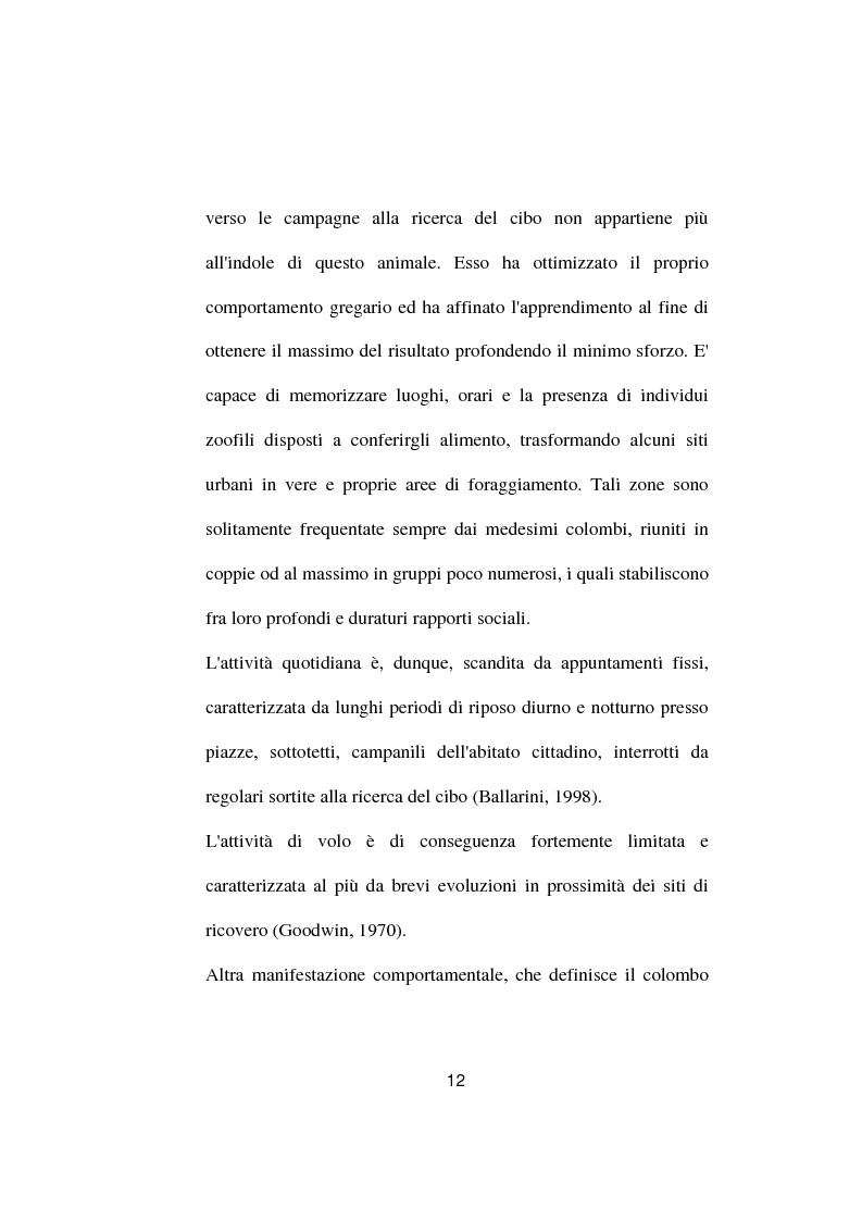 Anteprima della tesi: Ricerche ed osservazioni sullo stato sanitario dei colombi della Città di Palo del Colle, Pagina 11