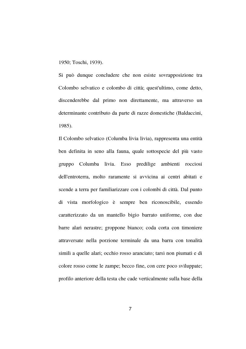 Anteprima della tesi: Ricerche ed osservazioni sullo stato sanitario dei colombi della Città di Palo del Colle, Pagina 6