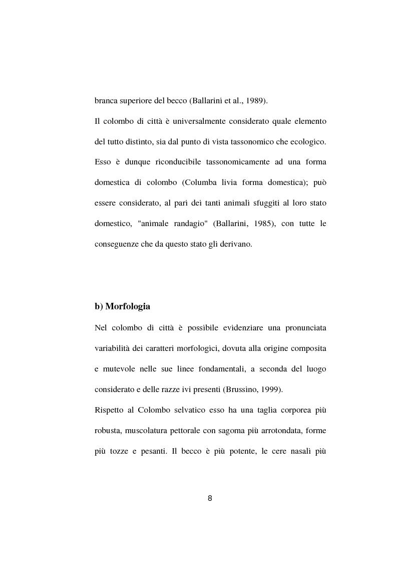 Anteprima della tesi: Ricerche ed osservazioni sullo stato sanitario dei colombi della Città di Palo del Colle, Pagina 7