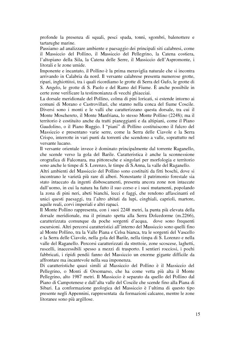 Anteprima della tesi: Per un modello di sviluppo della Calabria fondato sull'ecoturismo, Pagina 9