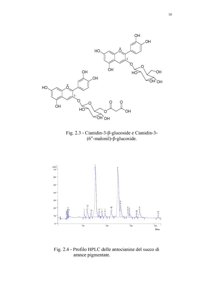 Anteprima della tesi: Recupero di antocianine da pulp wash di arance pigmentate mediante adsorbimento su resine, Pagina 10