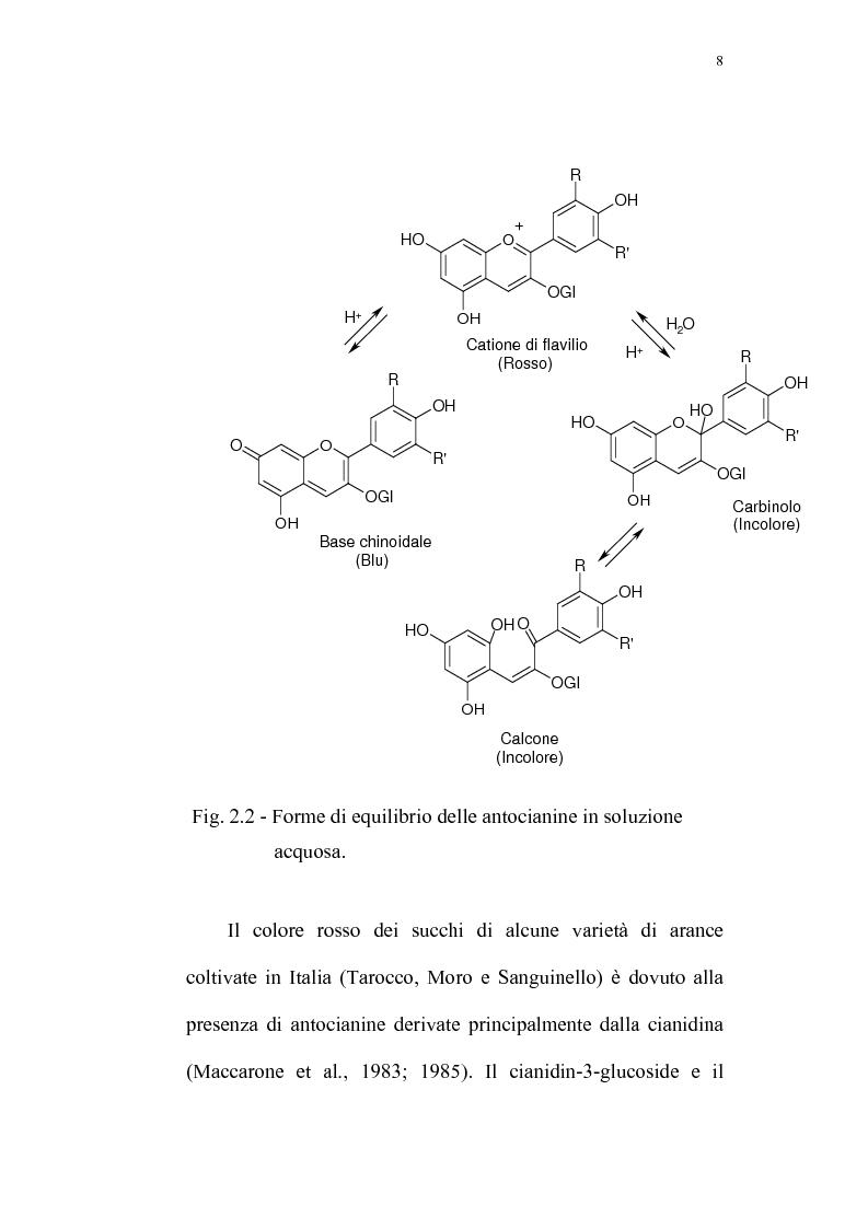 Anteprima della tesi: Recupero di antocianine da pulp wash di arance pigmentate mediante adsorbimento su resine, Pagina 8