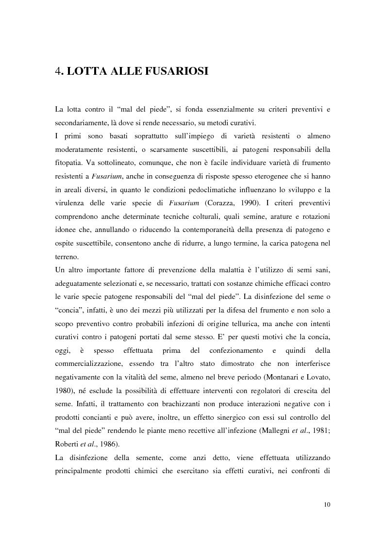 Anteprima della tesi: Aspetti dell'interazione di Gliocladium roseum e Trichoderma spp. con Fusarium culmorum e frumento, Pagina 10