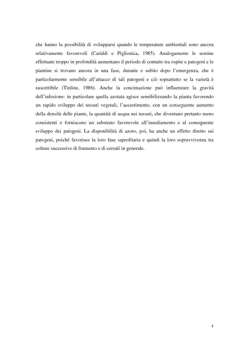Anteprima della tesi: Aspetti dell'interazione di Gliocladium roseum e Trichoderma spp. con Fusarium culmorum e frumento, Pagina 4