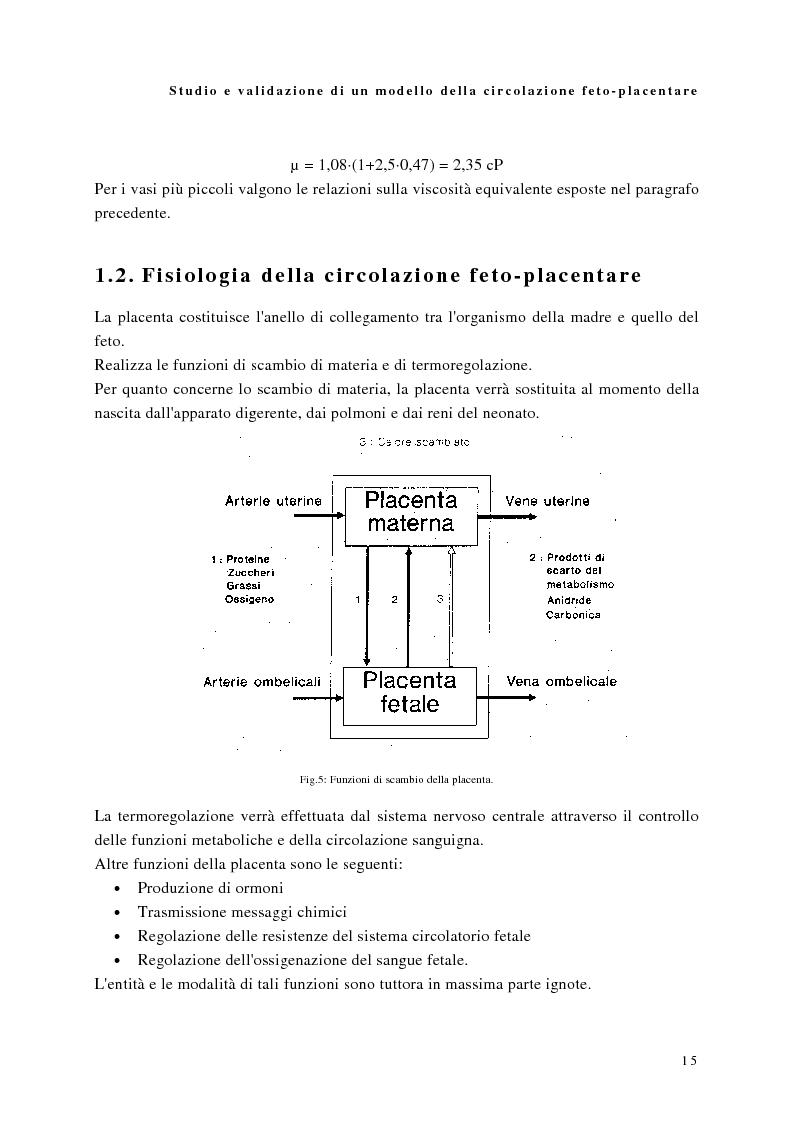 Anteprima della tesi: Studio e validazione di un modello di circolazione fetoplacentare, Pagina 11