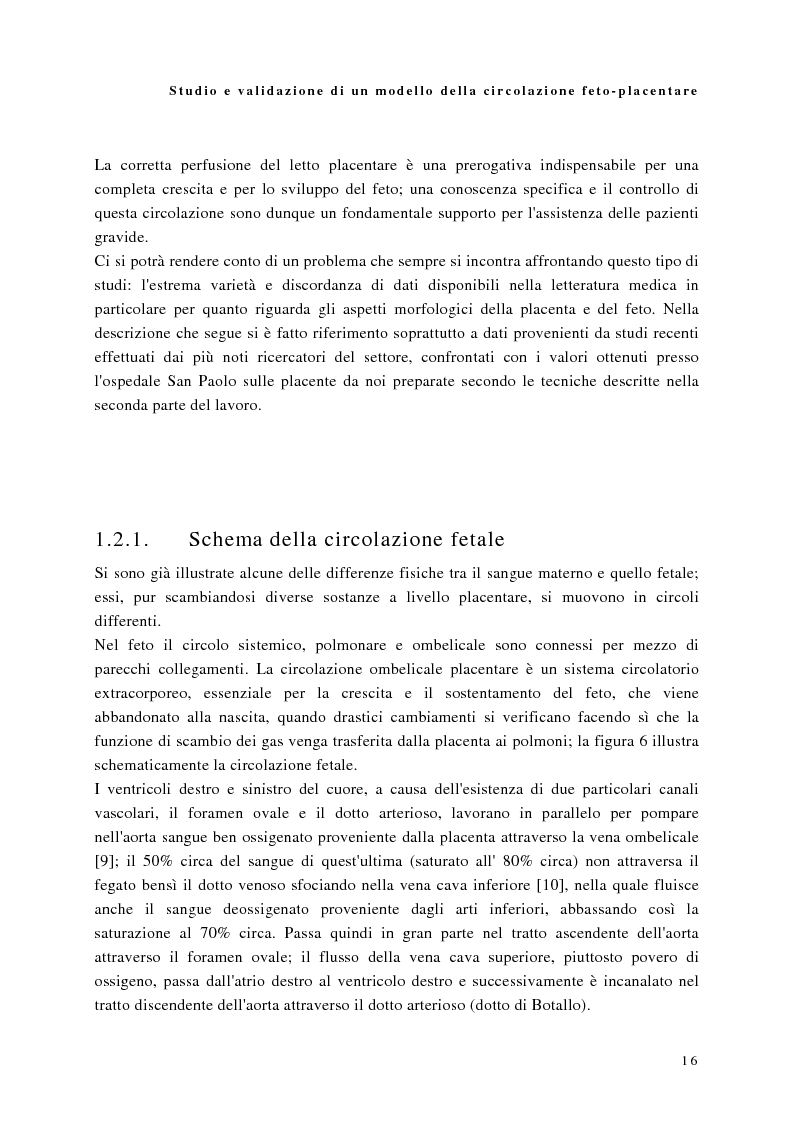 Anteprima della tesi: Studio e validazione di un modello di circolazione fetoplacentare, Pagina 12