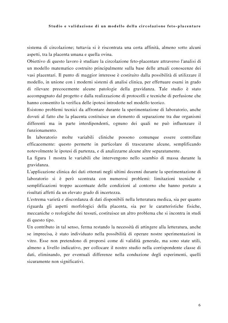 Anteprima della tesi: Studio e validazione di un modello di circolazione fetoplacentare, Pagina 2