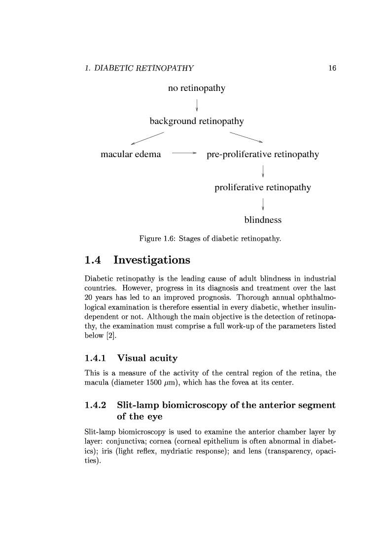 Anteprima della tesi: Computer Aided Diagnosis in Ocular Fundus Imaging, Pagina 12