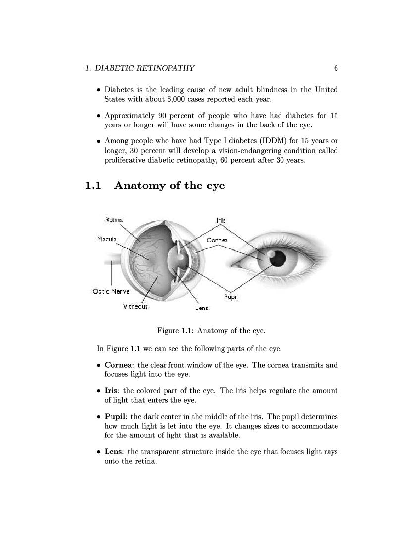 Anteprima della tesi: Computer Aided Diagnosis in Ocular Fundus Imaging, Pagina 2