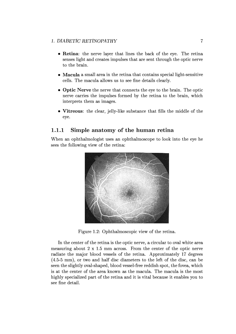 Anteprima della tesi: Computer Aided Diagnosis in Ocular Fundus Imaging, Pagina 3