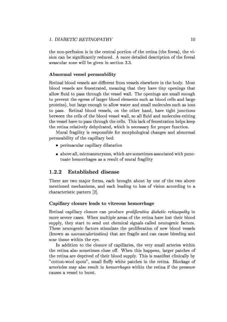 Anteprima della tesi: Computer Aided Diagnosis in Ocular Fundus Imaging, Pagina 6