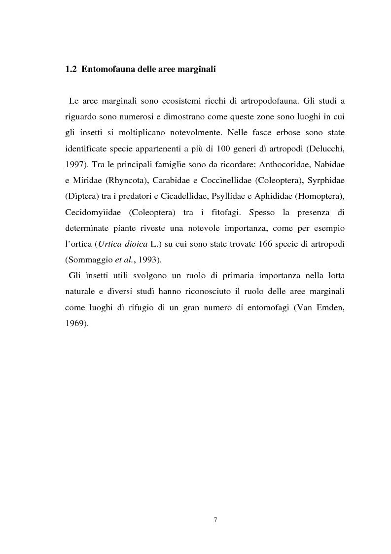Anteprima della tesi: Influenza delle zone non coltivate sul ciclo degli insetti predatori, Pagina 5