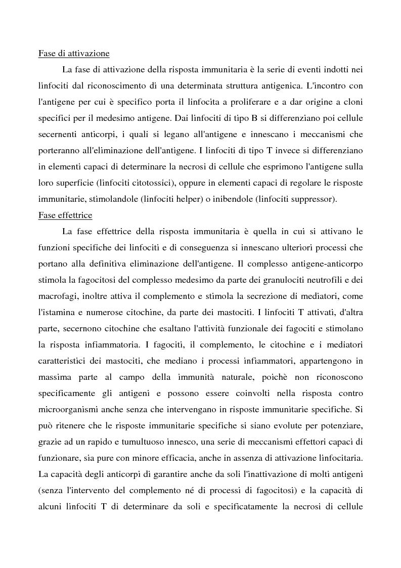 Anteprima della tesi: Mastociti e cellule dendritiche della cute e delle mucose analisi morfologiche e funzionali in condizioni normali e sperimentali, Pagina 10