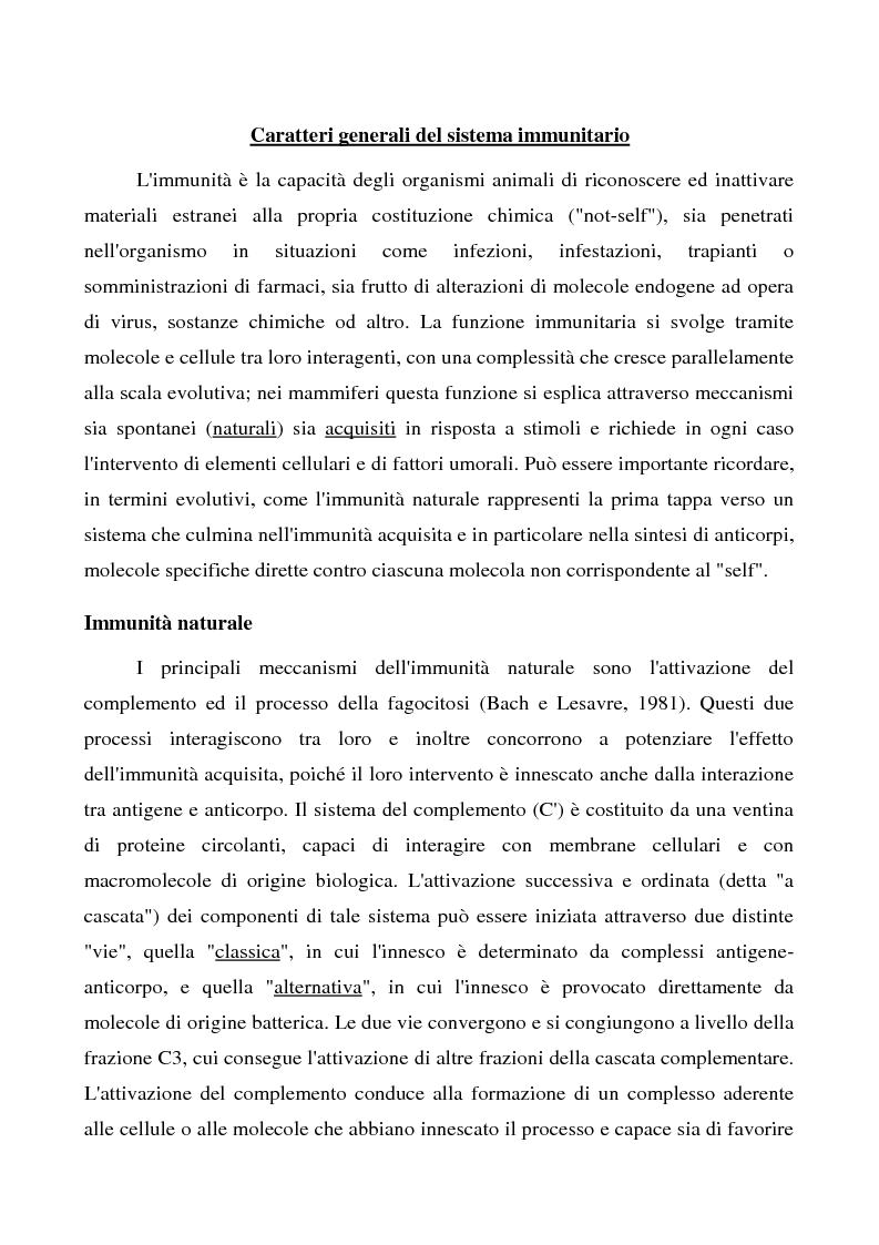 Anteprima della tesi: Mastociti e cellule dendritiche della cute e delle mucose analisi morfologiche e funzionali in condizioni normali e sperimentali, Pagina 5