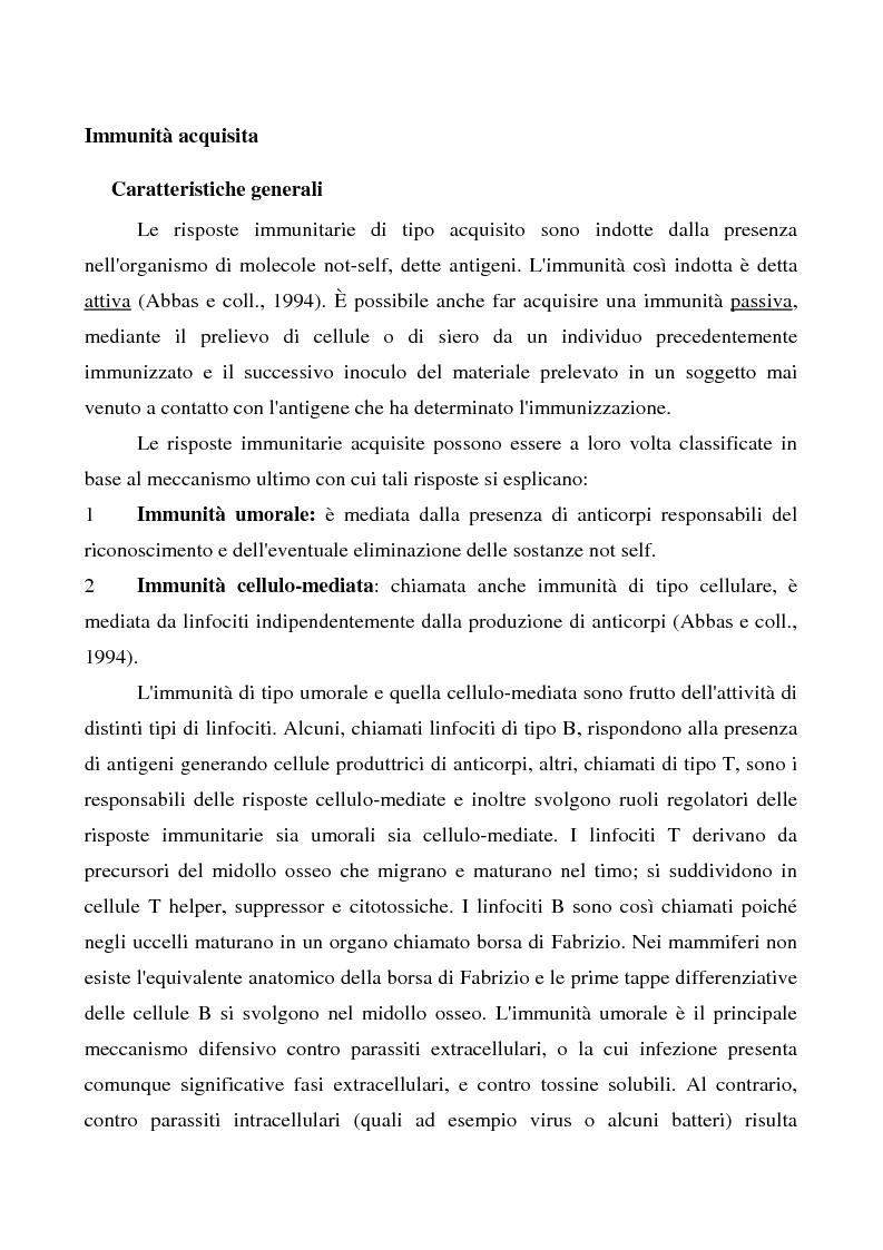 Anteprima della tesi: Mastociti e cellule dendritiche della cute e delle mucose analisi morfologiche e funzionali in condizioni normali e sperimentali, Pagina 7