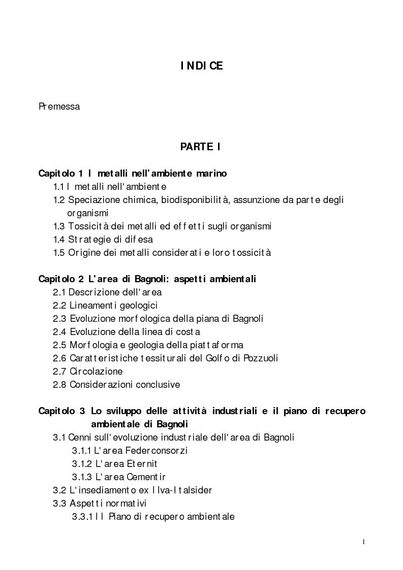 Indice della tesi: Valutazione dell'inquinamento da metalli pesanti nell'area antistante l'ex complesso industriale di Bagnoli, Pagina 1