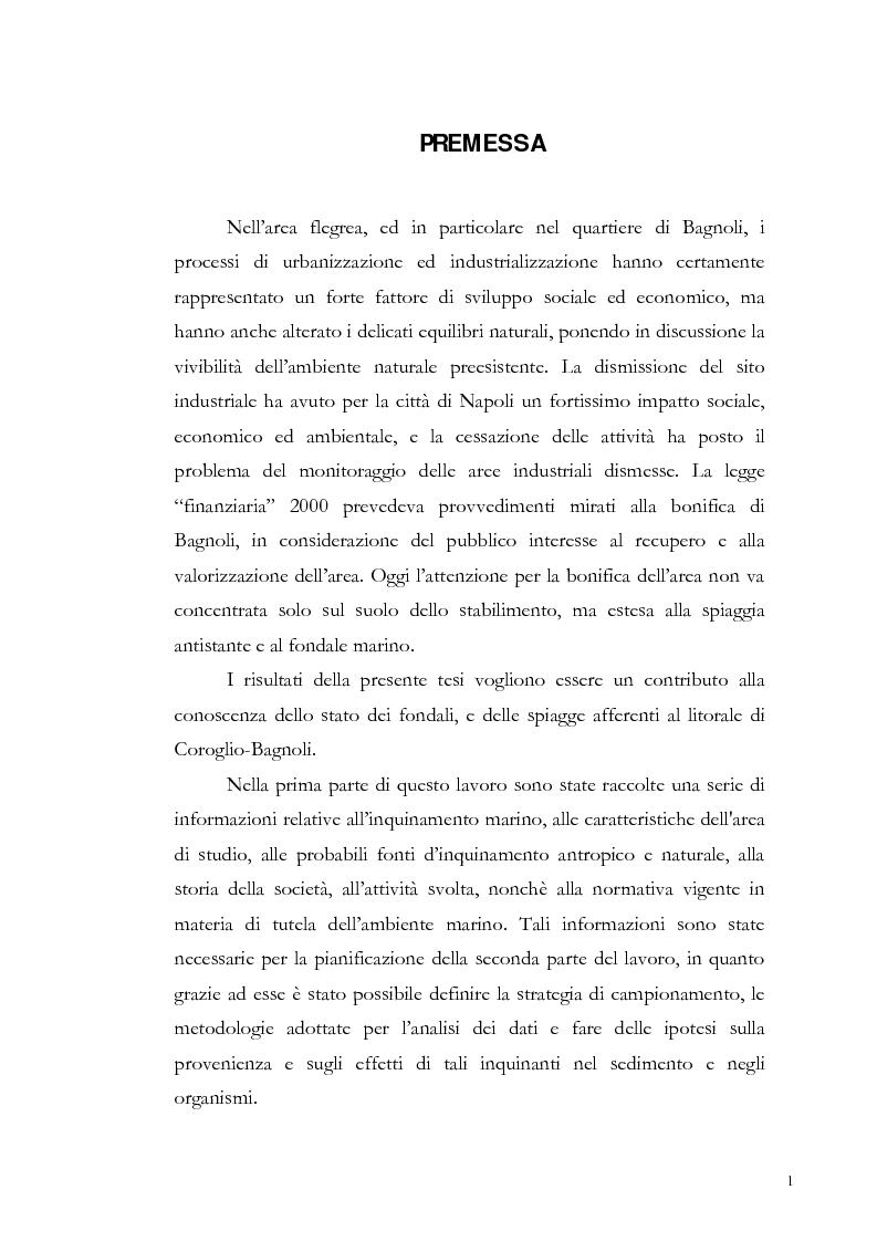 Anteprima della tesi: Valutazione dell'inquinamento da metalli pesanti nell'area antistante l'ex complesso industriale di Bagnoli, Pagina 1