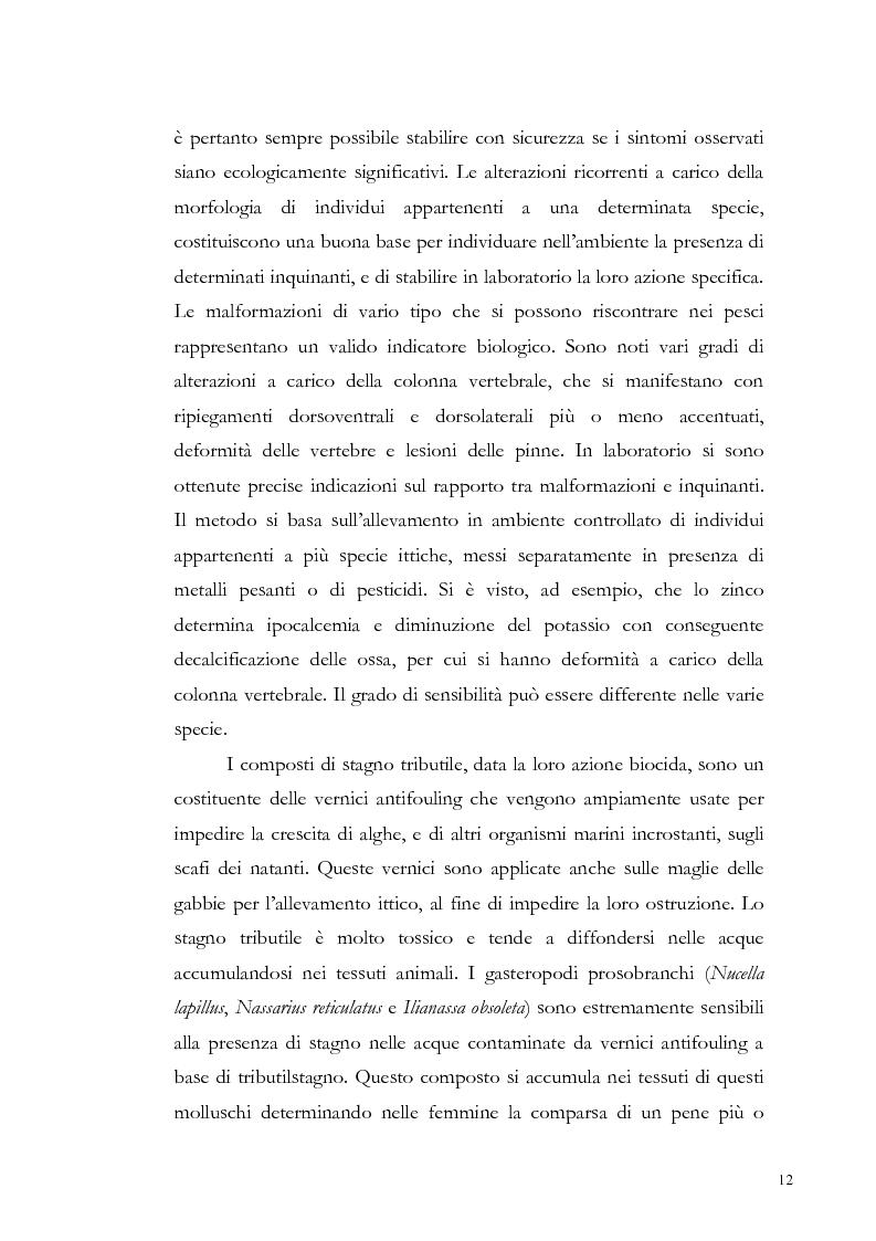 Anteprima della tesi: Valutazione dell'inquinamento da metalli pesanti nell'area antistante l'ex complesso industriale di Bagnoli, Pagina 12