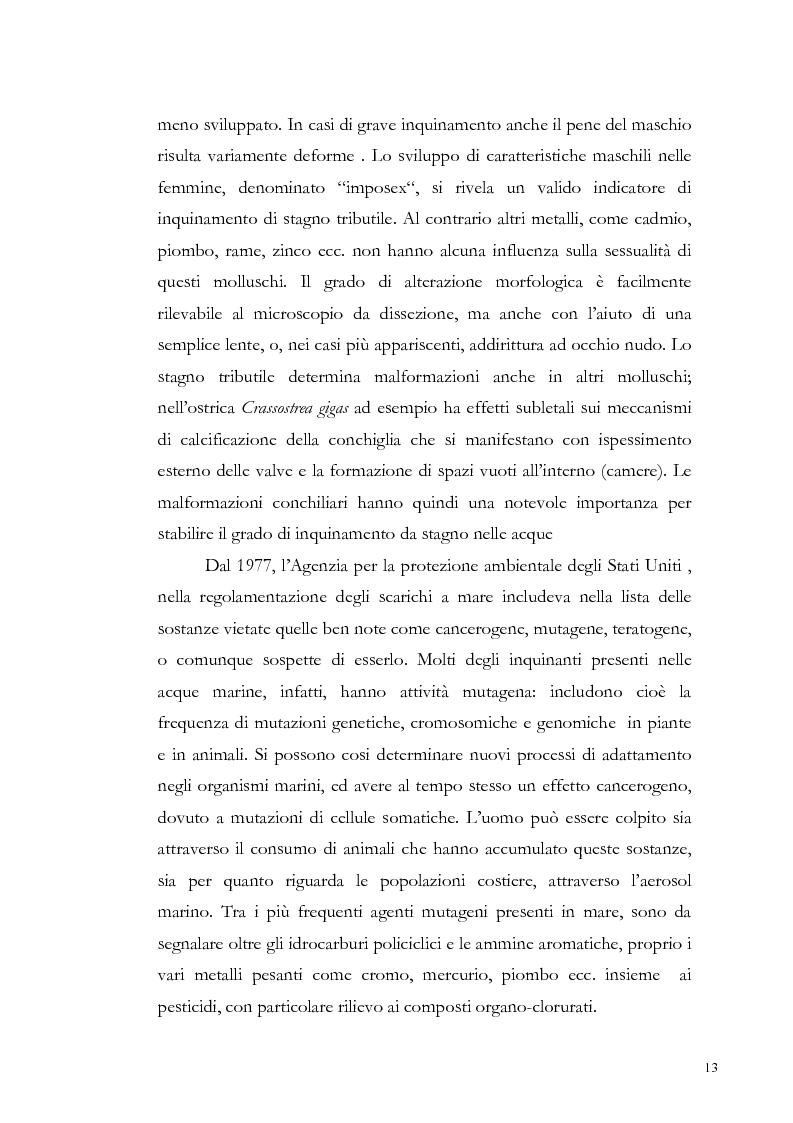 Anteprima della tesi: Valutazione dell'inquinamento da metalli pesanti nell'area antistante l'ex complesso industriale di Bagnoli, Pagina 13