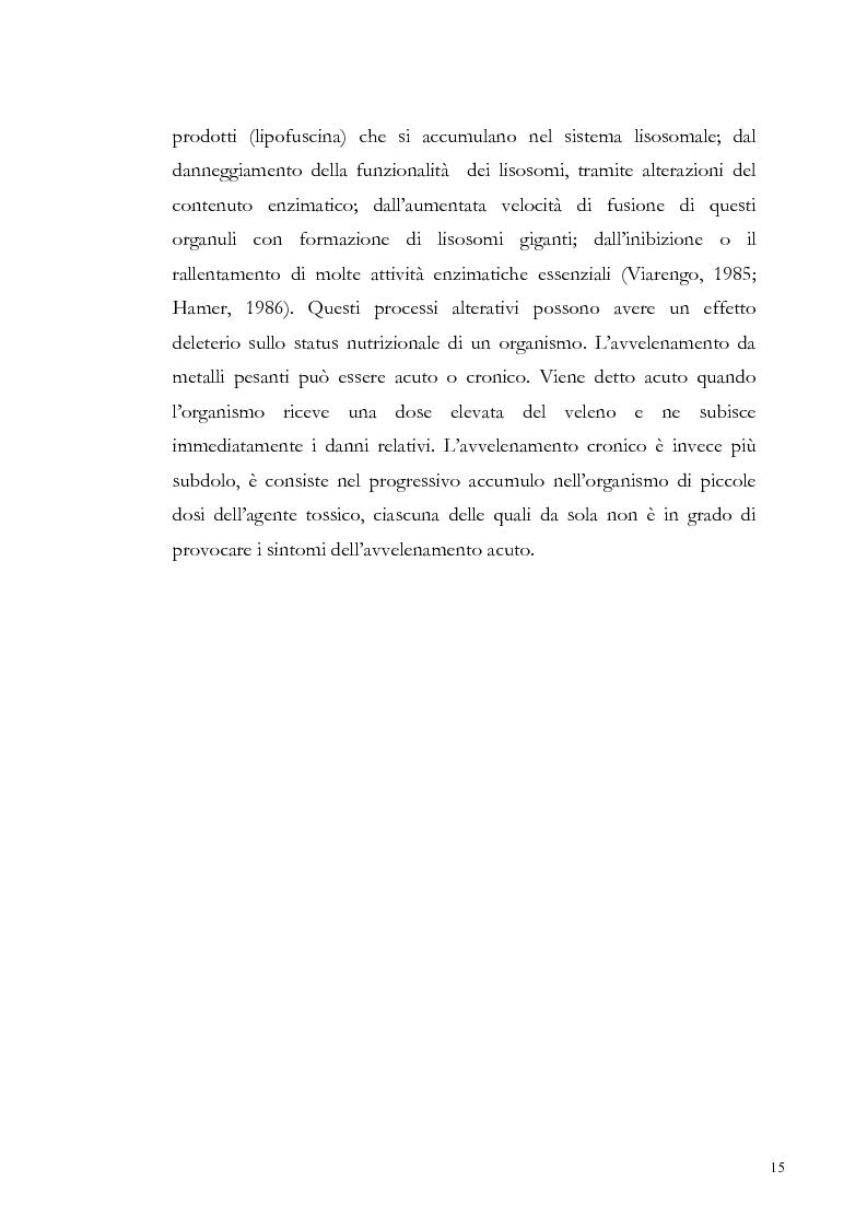 Anteprima della tesi: Valutazione dell'inquinamento da metalli pesanti nell'area antistante l'ex complesso industriale di Bagnoli, Pagina 15