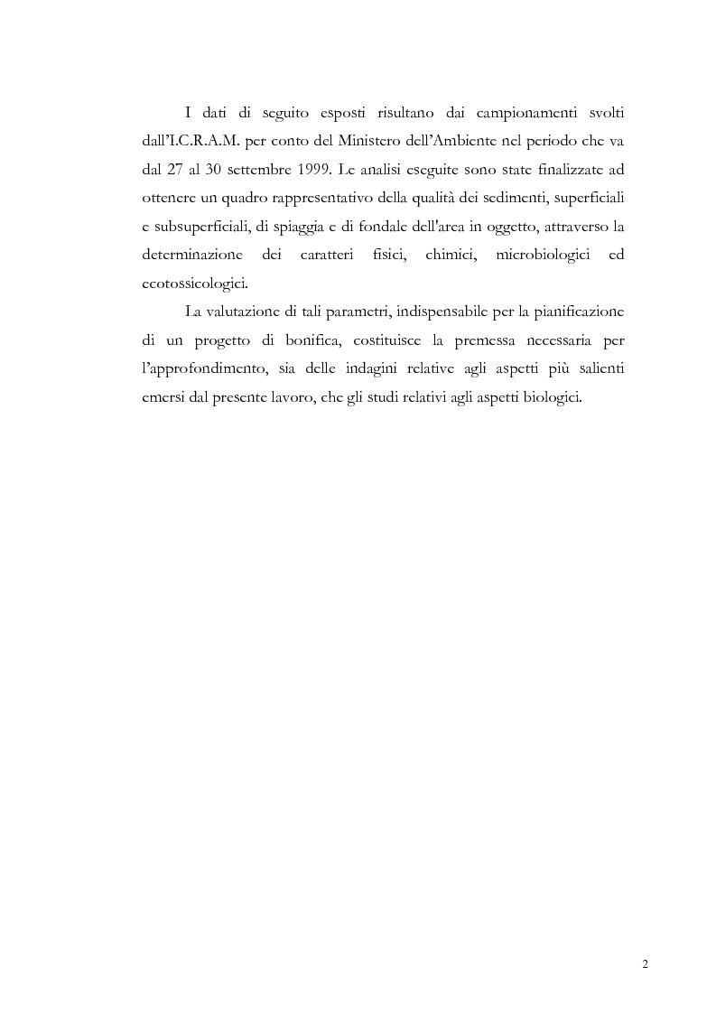 Anteprima della tesi: Valutazione dell'inquinamento da metalli pesanti nell'area antistante l'ex complesso industriale di Bagnoli, Pagina 2