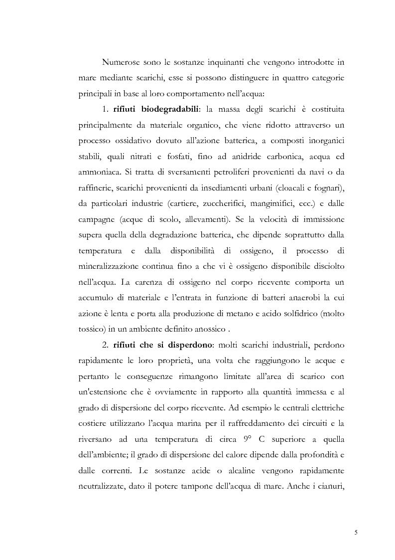 Anteprima della tesi: Valutazione dell'inquinamento da metalli pesanti nell'area antistante l'ex complesso industriale di Bagnoli, Pagina 5