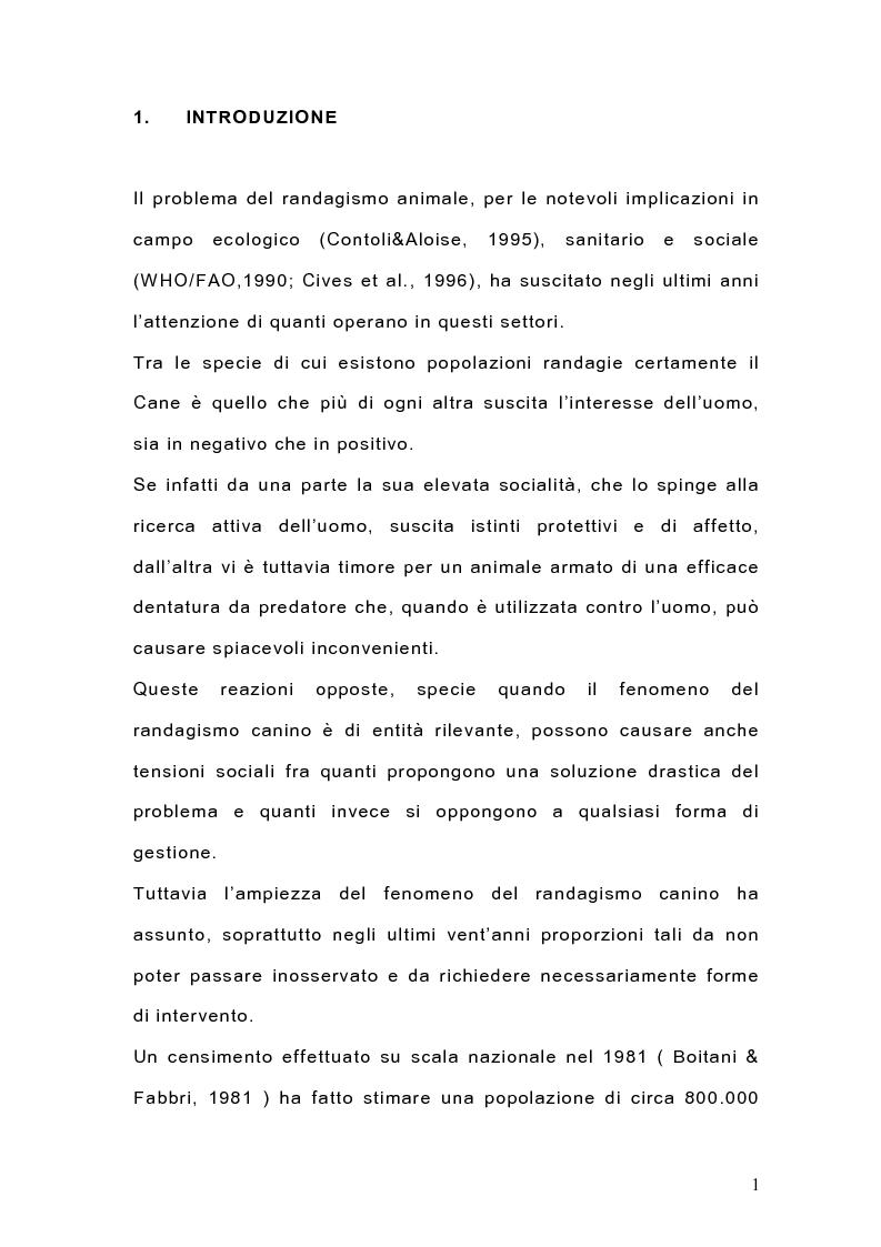 Anteprima della tesi: Indagine sulla popolazione canina nell'area di Arcavacata di Rende (CS), Pagina 1