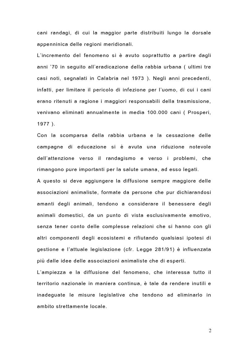 Anteprima della tesi: Indagine sulla popolazione canina nell'area di Arcavacata di Rende (CS), Pagina 2