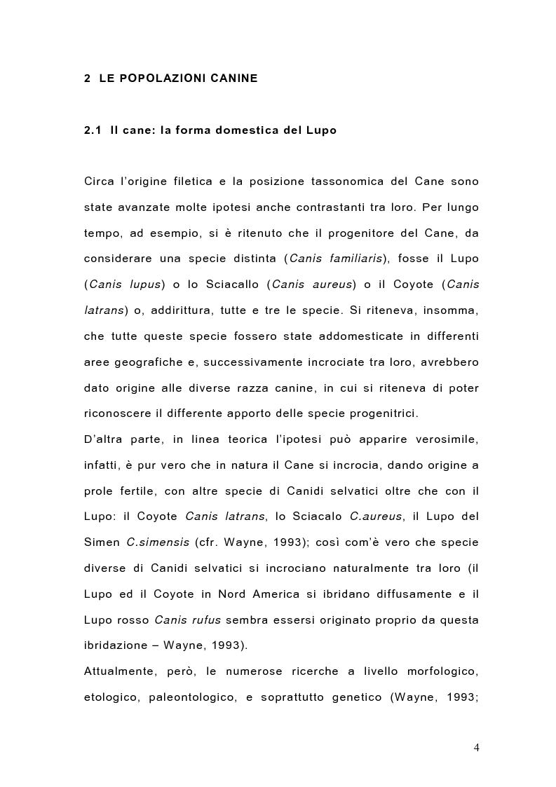 Anteprima della tesi: Indagine sulla popolazione canina nell'area di Arcavacata di Rende (CS), Pagina 4