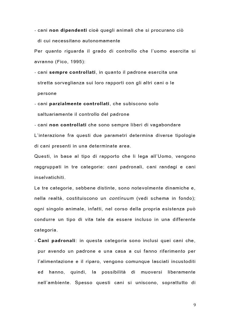 Anteprima della tesi: Indagine sulla popolazione canina nell'area di Arcavacata di Rende (CS), Pagina 9