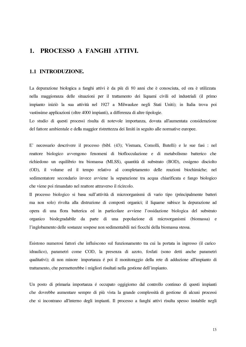 Anteprima della tesi: Analisi, aggiornamento e validazione di un sistema esperto per la gestione degli impianti di depurazione a fanghi attivi, Pagina 1