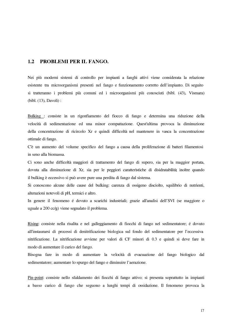 Anteprima della tesi: Analisi, aggiornamento e validazione di un sistema esperto per la gestione degli impianti di depurazione a fanghi attivi, Pagina 5