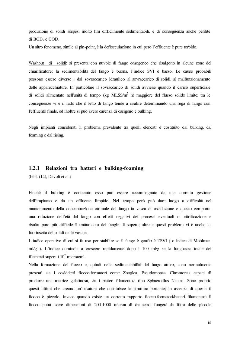 Anteprima della tesi: Analisi, aggiornamento e validazione di un sistema esperto per la gestione degli impianti di depurazione a fanghi attivi, Pagina 6