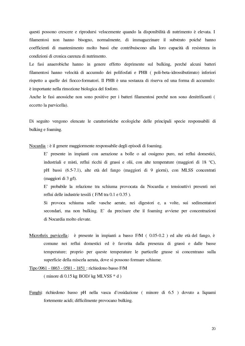Anteprima della tesi: Analisi, aggiornamento e validazione di un sistema esperto per la gestione degli impianti di depurazione a fanghi attivi, Pagina 8