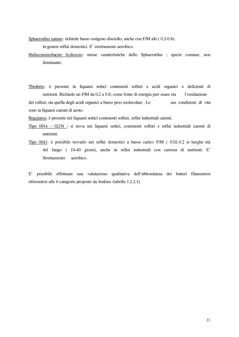 Anteprima della tesi: Analisi, aggiornamento e validazione di un sistema esperto per la gestione degli impianti di depurazione a fanghi attivi, Pagina 9
