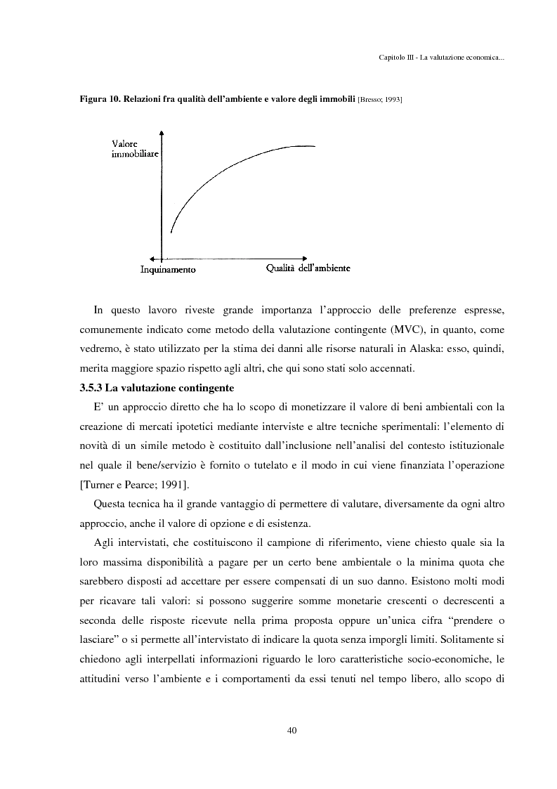 Anteprima della tesi: Il caso Exxon Valdez e il danno ambientale: valutazione economica, prevenzione e rimedi, Pagina 11