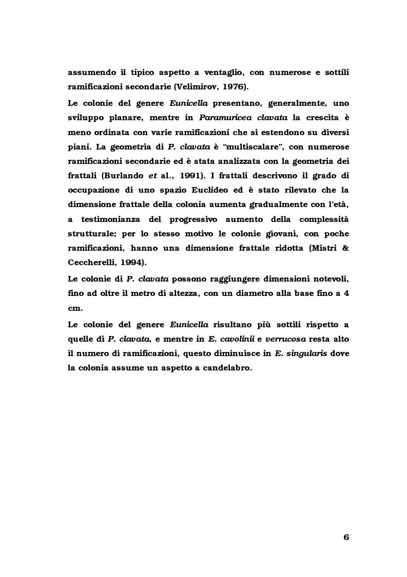 Anteprima della tesi: Biologia di alcuni Gorgonacei mediterranei in differenti condizioni sperimentali, Pagina 5