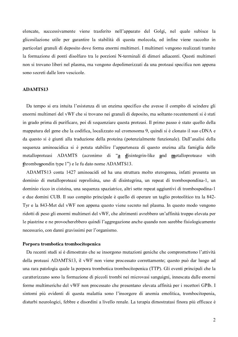 Anteprima della tesi: Proteolisi dei fattori della coagulazione, Pagina 2