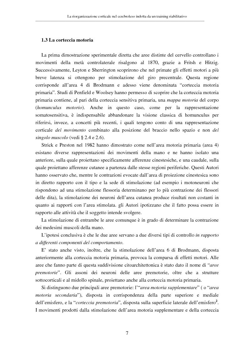 Anteprima della tesi: La riorganizzazione corticale nel cerebroleso indotta da un training riabilitativo, Pagina 11