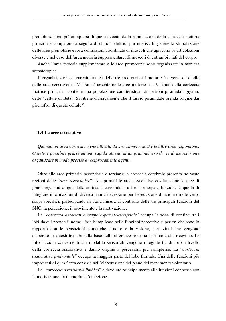 Anteprima della tesi: La riorganizzazione corticale nel cerebroleso indotta da un training riabilitativo, Pagina 12