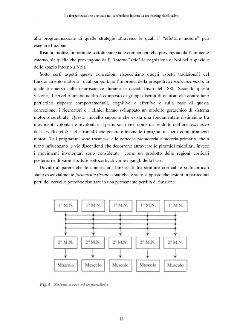 Anteprima della tesi: La riorganizzazione corticale nel cerebroleso indotta da un training riabilitativo, Pagina 15